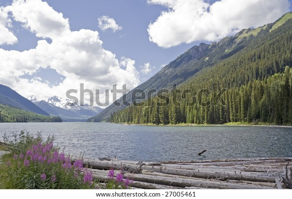 Duffey Lake with dead Trees, Canada