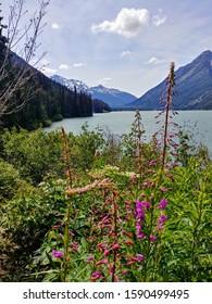 Duffy Lake in British Columbia with Fireweed