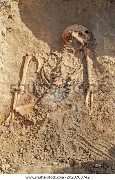 dug-grave-exhumed-human-skeleton-600w-20