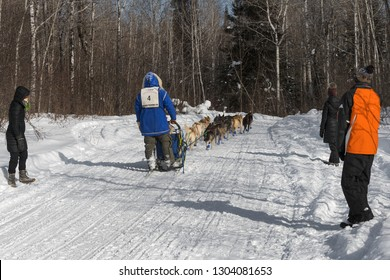 DULUTH, MN - JANUARY 27, 2019: Blake Freking passes by spectators during the John Beargrease Sled Dog Marathon. Freking went on to finish 1st on January 29th in Grand Portage.