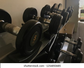 Dumbbell in your life