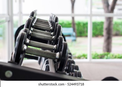 Dumbbells (weight training equipment) in modern sports club and gym