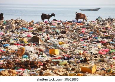 Dump on the beach of Socotra Island â?? man-made environmental disaster
