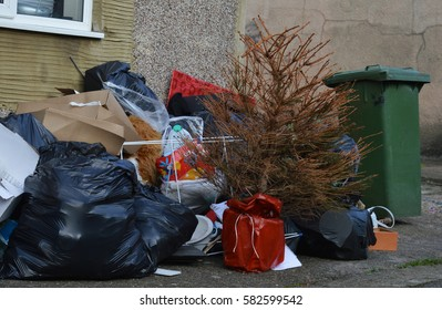 dumped Christmas tree