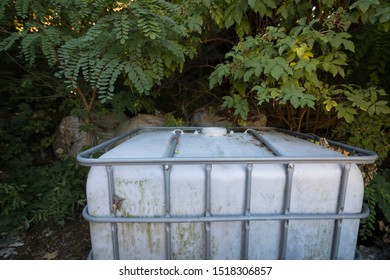 Dumped white industrial IBC container in nature