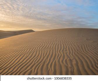Dunas Maspalomas- Desert in Canary island ,Gran Canaria