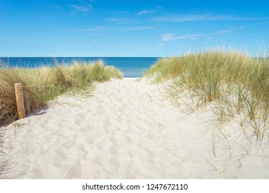 Dune at the Baltic Sea