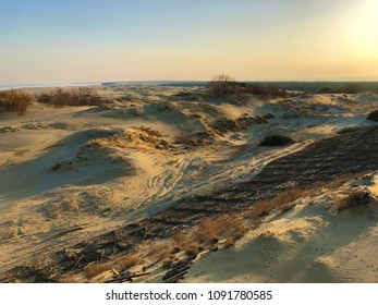 Dune Efa. The Curonian Spit