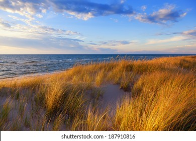 Dune Grass on Lake Michigan. Gold hued dune grass reflects the late day sun on the Lake Michigan shoreline