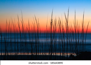 Dune grass is silhouetted by a colorful predawn sky over the Atlantic Ocean at Washington Oaks State Park, Florida.