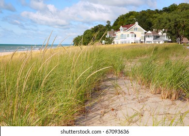 Dune Grasses with Vacation homes in the background