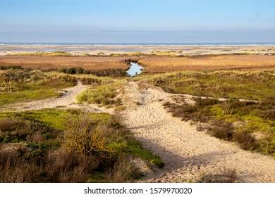 dune landscape on island Borkum, travel germany