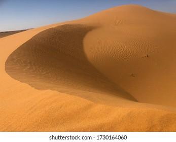 dune landscape in western sahara