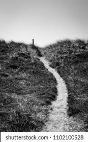 dune north sea denmark