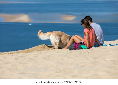 Dune of Pilat, France - September 10,2018: Couple and Golden Retriever on the Dune of Pilat, the tallest sand dune in Europe. La Teste-de-Buch, Arcachon Bay, Aquitaine, France