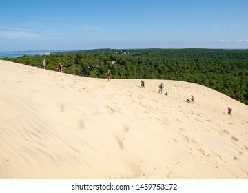 Dune of Pilat, France - September 10,2018: People walking on the top of the Dune of Pilat, the tallest sand dune in Europe. La Teste-de-Buch, Arcachon Bay, Aquitaine, France