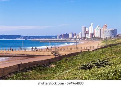 Dune vegetation beach and ocean against blue sky and city skyline in Durban, South Africa