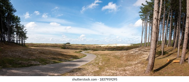 Dunes area called the 'schoorlse duinen' in the dune area of the province of North Holland, the Netherlands