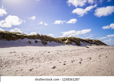 Dunes at the beach of Amrum Germany.