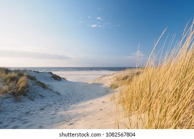 Dunes and beach. North sea