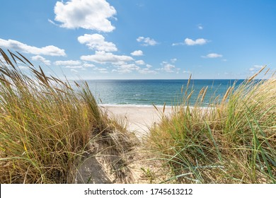 Dunes beach at the North Sea