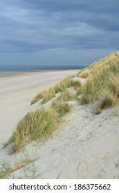 Dunes, beach and sea in Renesse, Zeeland, Netherlands