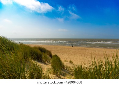 Dunes at Belgian north sea coast against cirrus and stratus clouds and reed grass, near De Haan, Belgium