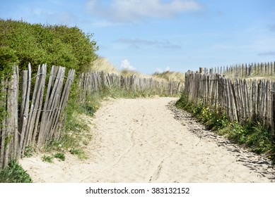 Dunes and blue sky at the North Sea, Blankenberge, Belgium