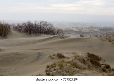 dunes of the Curonian Spit, reserve of Russia