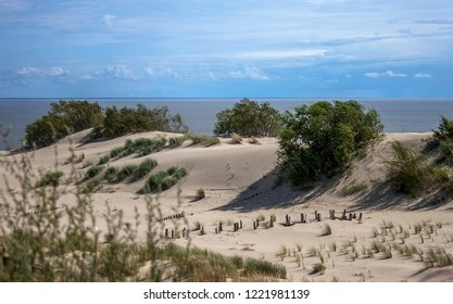 Dunes of Curonian spit in Russian baltic