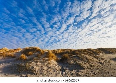 Dunes at the Danish North Sea coast the beach of Henne