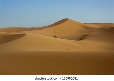 The dunes in desert of Merzouga