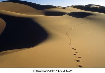 Dunes of Erg Chebbi in Morocco