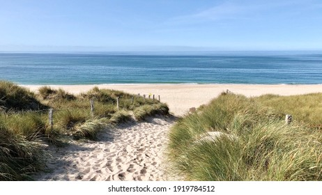 The dunes with grass on the island of Sylt - Shutterstock ID 1919784512