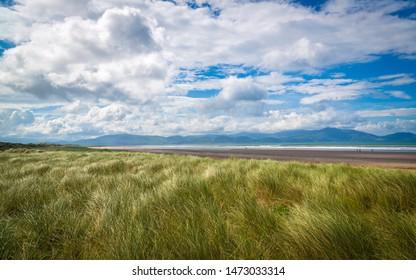 dunes at Inch Beach on Dingle Peninsula, Co Kerry, Ireland