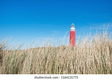 dunes and lighthouse in Texel - Netherlands Holland
