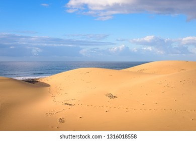 Dunes in Maspalomas, Gran Canaria. Sunrise in sand dunes (El Oasis) on beach Playa del Ingles near Maspalomas. Human footsteps in sand of dunes desert landscape. Gran Canaria.