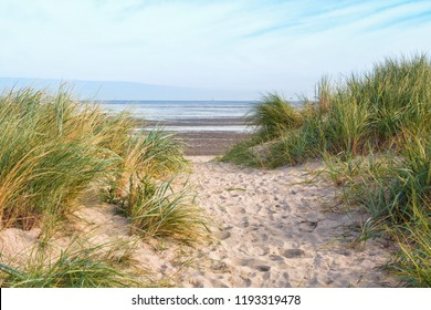 Dunes at the North Sea beach of Schillig, Lower Saxony, Germany