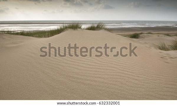 Dunes with ocean background