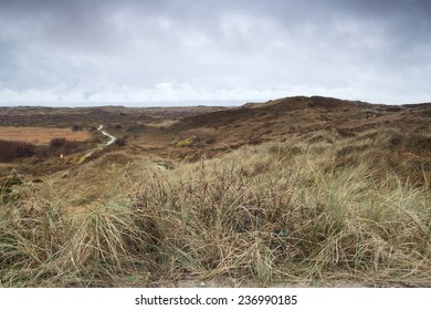 Dunes on Dutch island Texel in autumn.