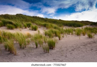 Dunes on the island of Juist, Germany