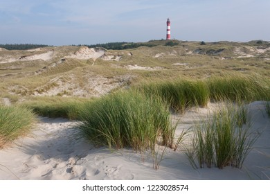 Dunes on the North Sea coast on the Wadden island Amrum, Germany.