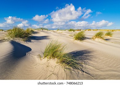 Dunes on the North Sea coast on the island Amrum, Germany.