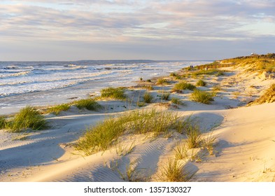 Dunes with patchy grass in light of rising sun at high tide along a sandy beach with boardwalk access on a barrier island along the Atlantic coast of Georgia, USA, in springtime