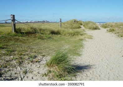 Dunes of sand with green tall grass near Northern sea in Zeebrugge, Belgium