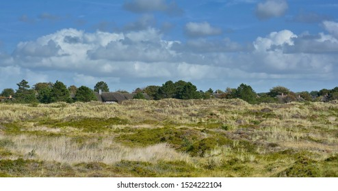 in the Dunes of Sankt Peter-Ording in North Frisia,Schleswig-Holstein,Germany