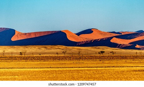 The dunes in Sossusvlei, Namibia.