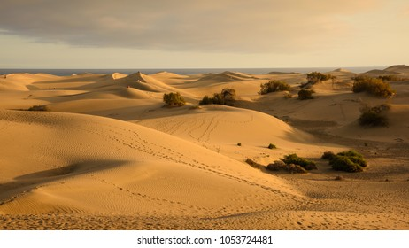 The dunes at sunset; Maspolomas, Gran Canaria. A favourite place for families, lovers and naturists to sit and watch the sun go down.