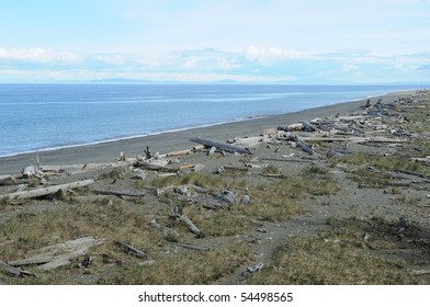 Dungeness Spit, the longest natural sand spit and wildlife reserve in washington, United States.