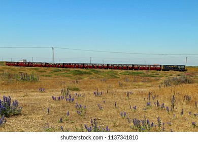 Dungeness,Kent/UK 06-28-18 Romney, Hythe and Dymchurch miniature railway. A diesel locomotive pulling 8 carriages leaves Dungeness station